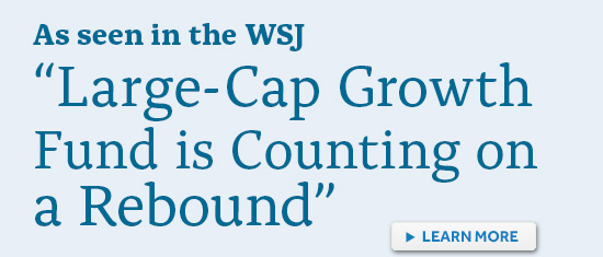 LargeCap Growth Counting on a Rebound
