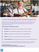 PDF thumbnail: Understanding small business growth